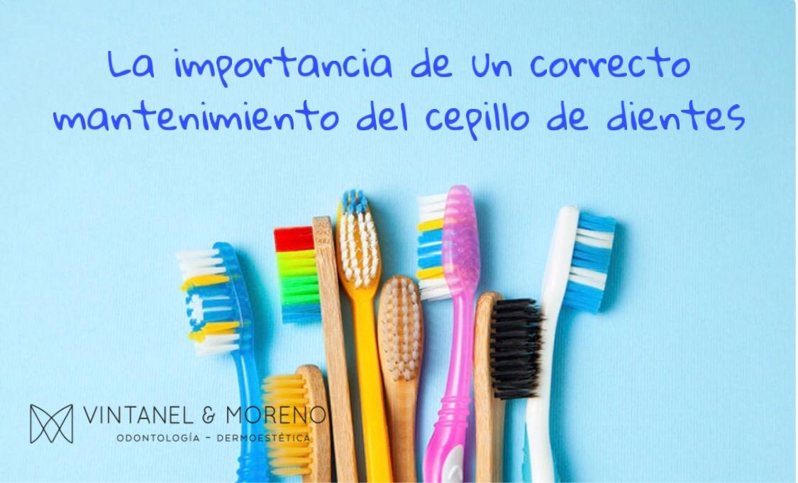 Cuidado y mantenimiento del cepillo de dientes